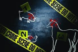 Criminologia e tutela degli animali Master