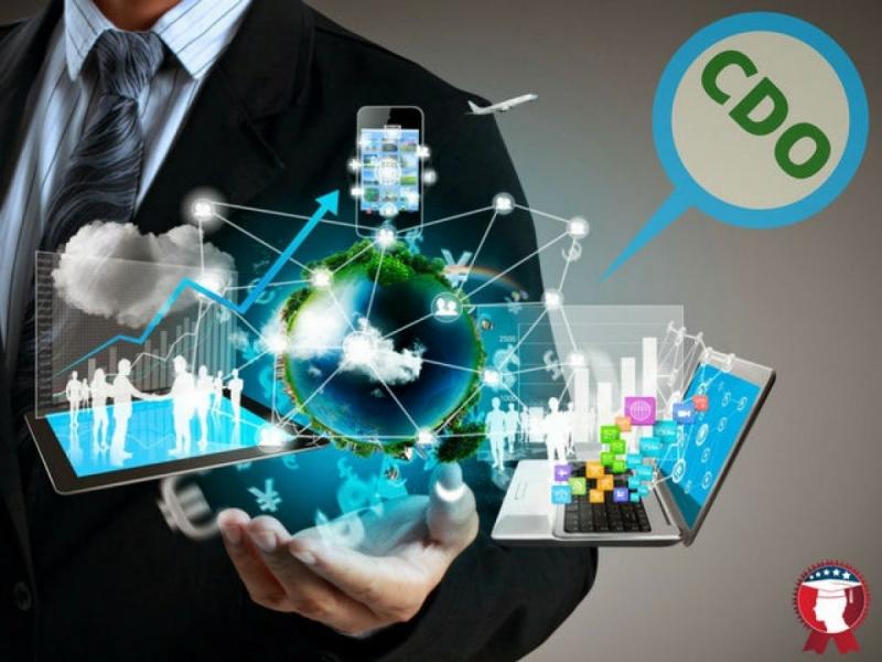 Digital Marketing & CDO